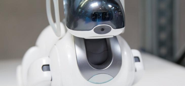 Seminar zum Thema «Roboter im Alltag» am 7. Februar 2019 im Coworking Space Loreto